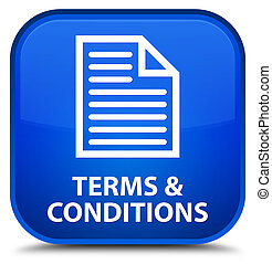 Terms and conditions (page icon) special blue square button