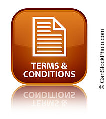 Terms and conditions (page icon) special brown square button