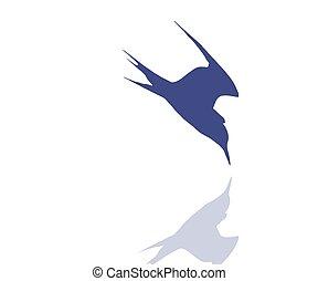Tern bird rushing into the water