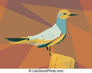 Tern illustration - Colorful vector illustration of a...