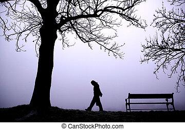 terneergeslagen, in, mist