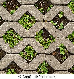 terra, chão, coberto, com, azulejos