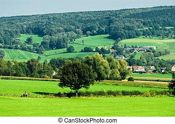 terra cultivada, paisagem
