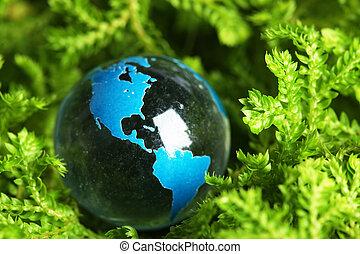 terra, pianta, marmo
