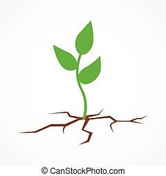 terra, seme, arido, icona