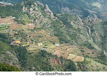 mountain landscape and terraced agriculture