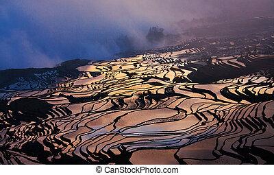 Terraced Fields in color - The 934 acres terraced fields in...