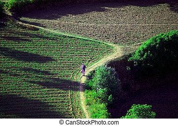 terraced fields - man walking from work on the fields