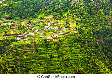 Terraced hills, Madeira - Cultivated terraced hill on a...