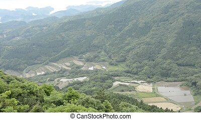Terraced rice fields - Overhead view of terraced rice fields...