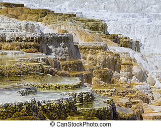 Terraces at Mammoth Hot Springs - Travertine terraces at...