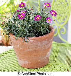 Flower pot on garden table