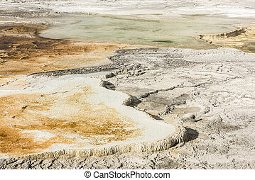 Terraces - Vivid Canary Spring area at thermal terraces rock...