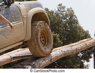 Terrain climbing an obstacle tree trunks