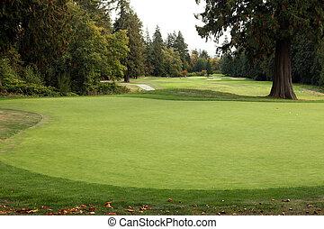 terrain de golf, -, luxe, international, norme