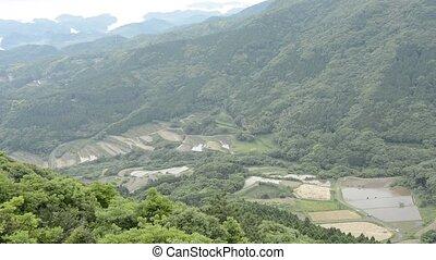terrasvormig, rijstvelden