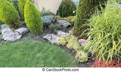 terrestre, arrière-cour, décoratif, jardin