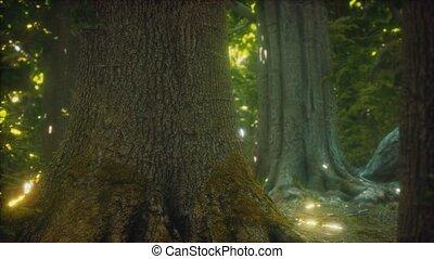 terrestre, primordial, forêt, mossed