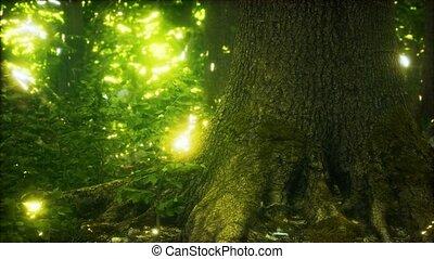 terrestre, primordial, mossed, forêt