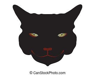 terribile, testa, nero, orrore, gatto