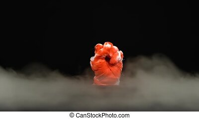 Terrible zombie mummy hand in blood rising outfrom the smoke...