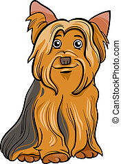 terrier de yorkshire, caricatura, ilustración, perro
