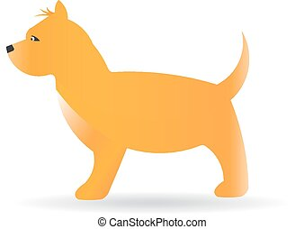 Terrier dog on white background