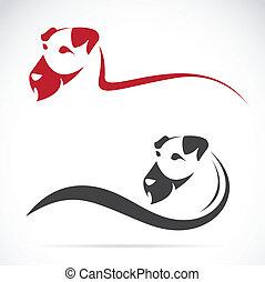 terrier), (irish, imagen, vector, perro