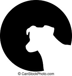 terrier russell gato, cabeza, delante de, la luna