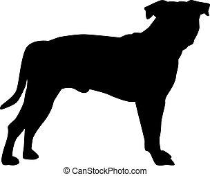 terrier, silueta, staffordshire