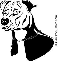 terrier, staffordshire, hund