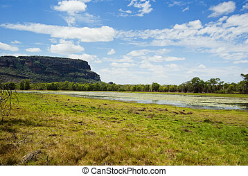 território, austrália, billabong, norte