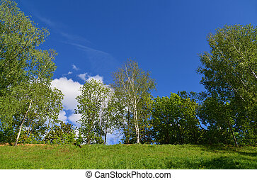 territory of Eco Shore Park in Khimki, Russia - territory of...
