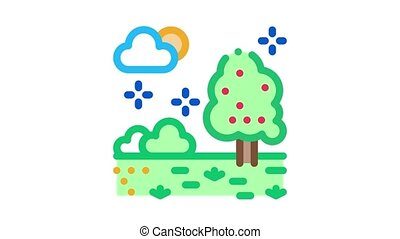 territory of well-groomed forest Icon Animation. color territory of well-groomed forest animated icon on white background