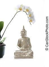tessile, budda, orchidea