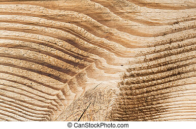 tessuto legno, isolato, bianco