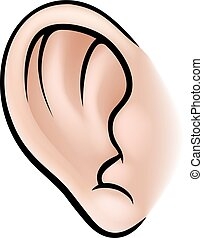 test, fül, rész