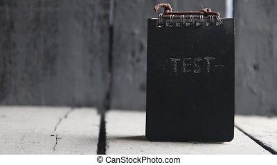 Test idea.  Concept exam, survey, testing.