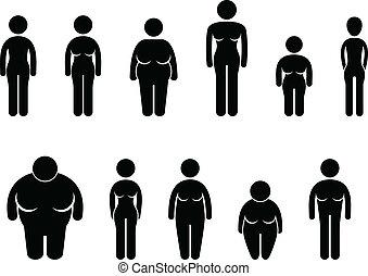 test, nő, nagyság, alak, ikon