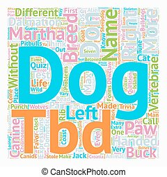 Test Your Canine Acumen text background wordcloud concept