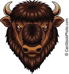 testa, bisonte, mascotte