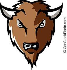 testa, bisonte
