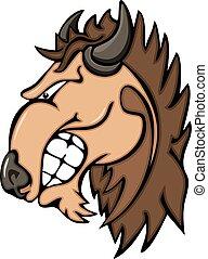 testa, bufalo, simbolo, animale