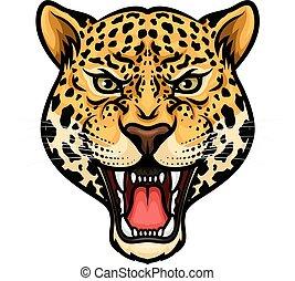 testa, giaguaro, isolato, disegno, cartone animato, mascotte