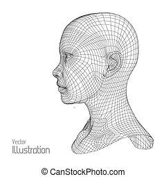 testa, il, persona, da, uno, 3d, grid., umano, filo, model.,...