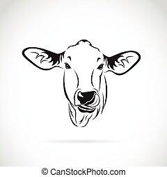 testa, mucca, fondo., vettore, vitello bianco