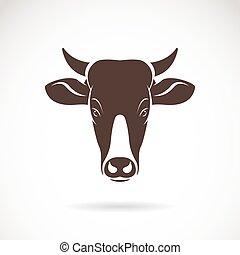 testa, mucca, immagine, vettore, fondo, bianco