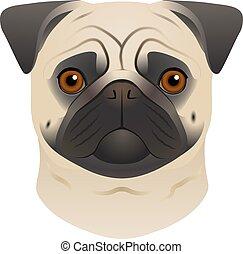 testa piana, pug, colorito, razza, cane, isolato, fondo., portrait., bianco, spazzoni, cane, cartone animato