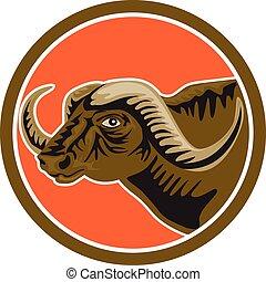 testa, retro, africano, cerchio, bufalo, lato