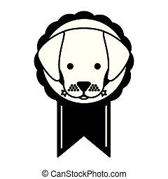 testa, rosetta, premio, cane
